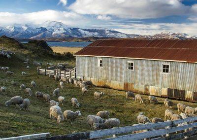 Patagonian Estancia La Peninsula